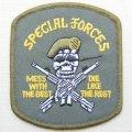 ミリタリーワッペン Special Forces スカル ベレー カーキ *メール便可